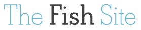 The Fish Site logo